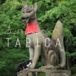 【2月1日】茨城の民話 四匹の狐〜稲荷四社を巡る、民話の旅。狐のお土産つき!